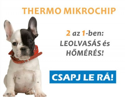 thermo mikrochip